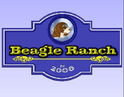 beagle-ranch.jpg