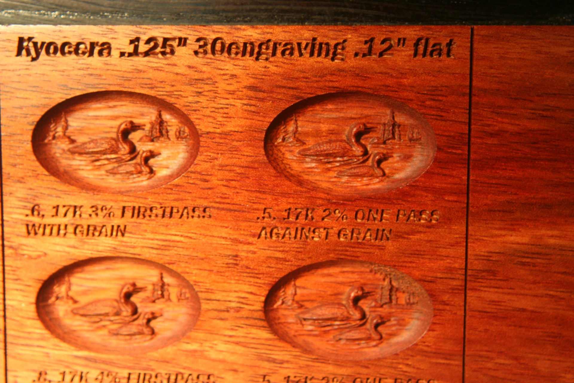 Bloodwood engravingbit .012flat 2 passes left side.jpg