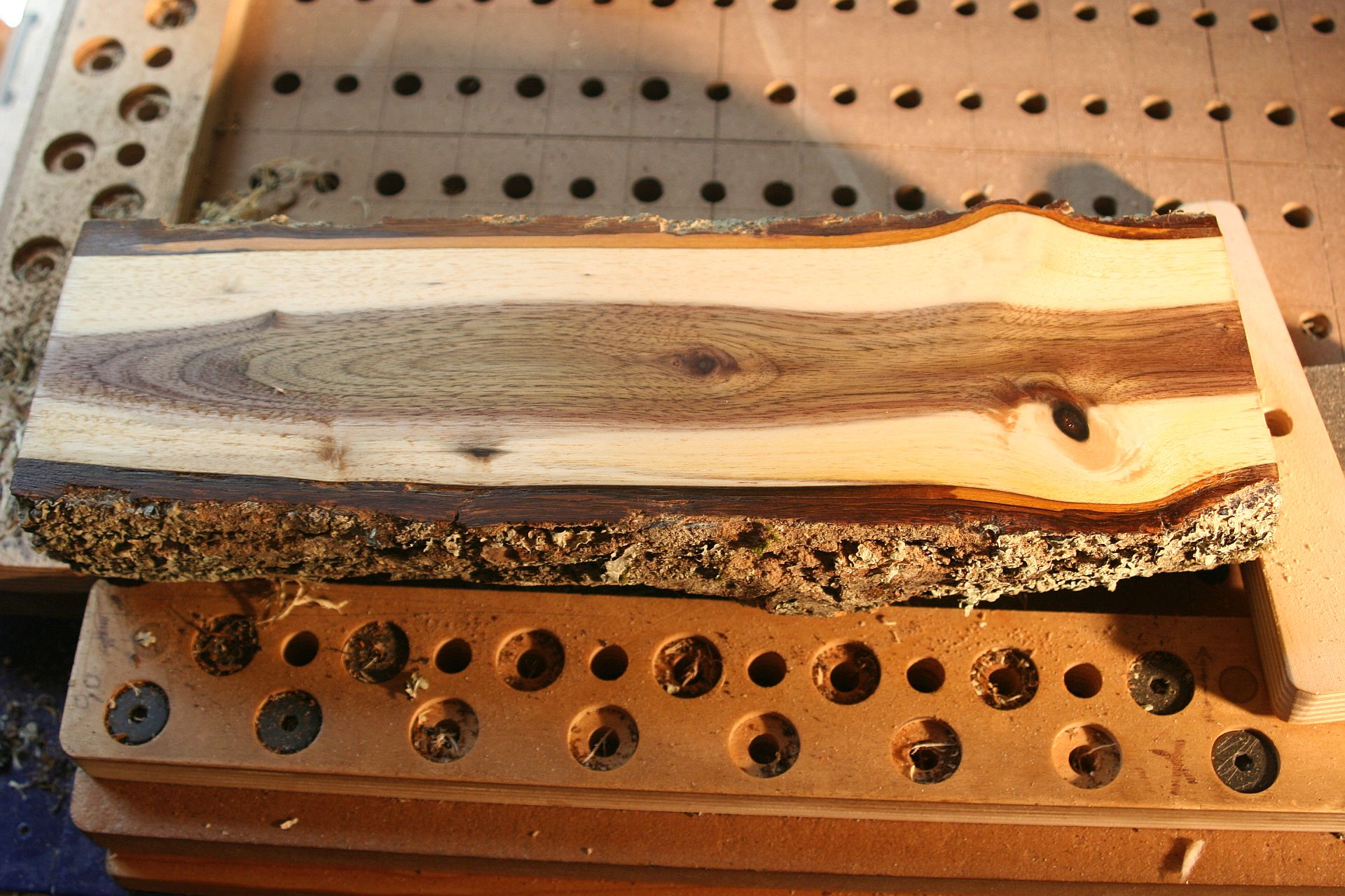 wet Walnut branch .05inch passes 3IPS 14-15K.jpg