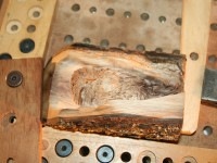1.7.19 BLACK WALNUT OWL2  ON MACHINE BRUSHED.jpg